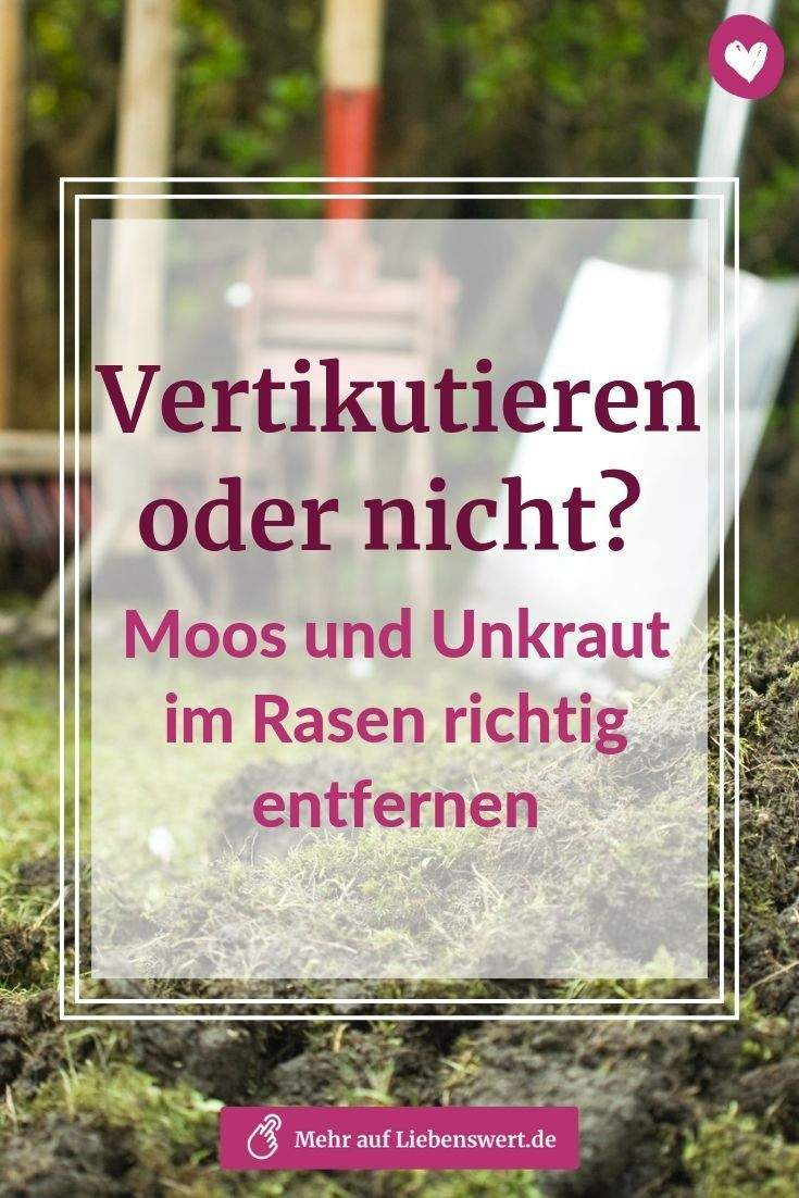 Garten Vertikutieren Luxus Wer Einen Schönen Garten Haben Will Sagt Moos Und Unkraut