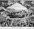 Garten Von Ehren Inspirierend Datei Die Gartenlaube 1880 B 149 –