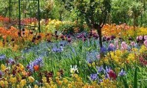 40 Frisch Garten Von Monet Schön