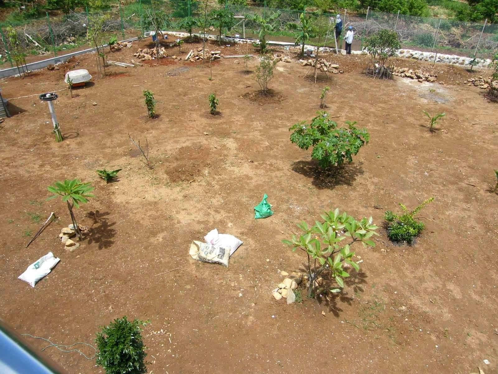 gartengestaltung ideen vorgarten reizend 50 inspirierend garten ideen terrasse of gartengestaltung ideen vorgarten