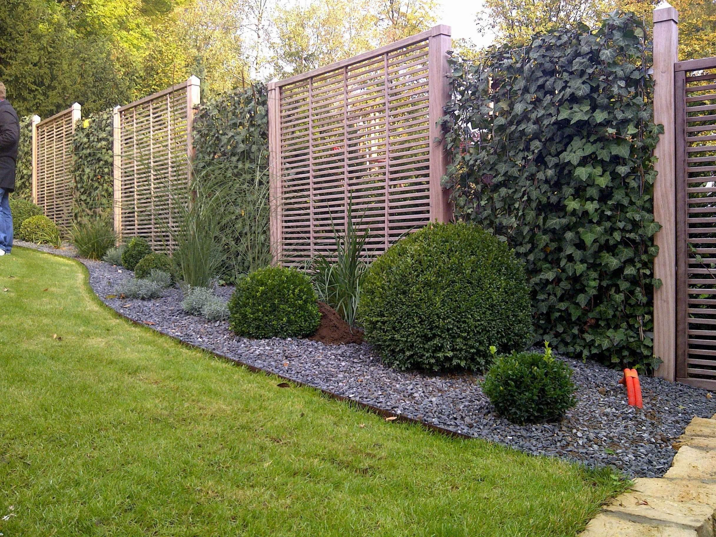 Garten Zeichnen Inspirierend Pflanzen Garten Sichtschutz — Temobardz Home Blog