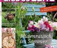 Garten Zeitschrift Luxus Liebes Land Juli 2015 Magazin