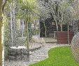 Gartengestaltung Für Kleine Gärten Neu 20 Luxury Großer Garten Concept Jamesbechler