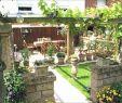 Gartenideen Für Kleine Gärten Inspirierend Gartengestaltung Kleine Garten
