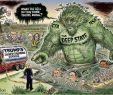 Gemüse Im Garten Frisch Trump Qanon & Co Besiegen Den Schattenstaat