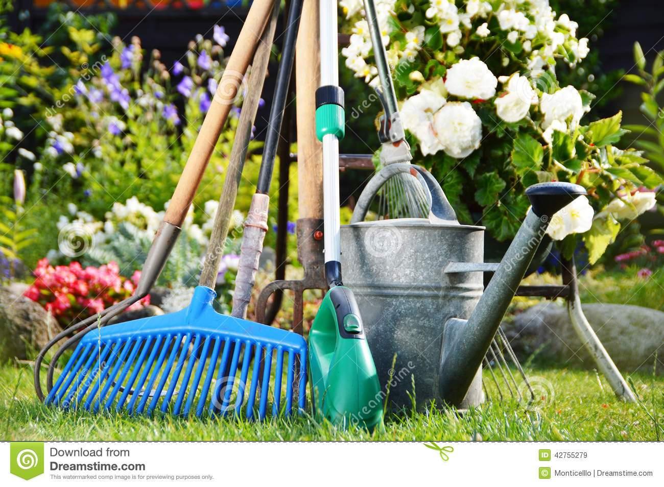 stockfoto gießkanne und werkzeuge im garten image