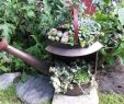 Gießkanne Garten Luxus Des Gibs Nois Aktuelles Aus Dem Kreativ Laden Fotos Und