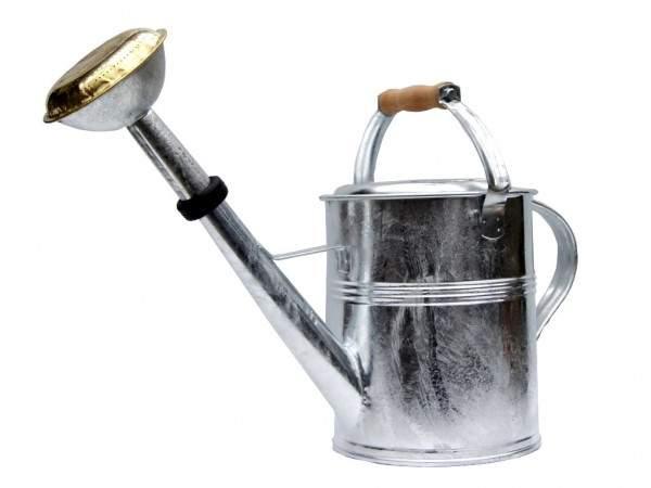 giesskanne mit garten von ehren logo 5 liter mit holzgriff messingbrause feuerverzinkt 8379