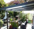 Glas Sichtschutz Garten Schön Sichtschutz Terrasse Pflanzen — Temobardz Home Blog
