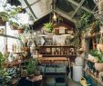 Glashaus Garten Inspirierend 30 Of the Cutest Plant Shops Around the World