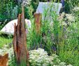 Glaspavillon Garten Schön Gartenideen Gestaltung