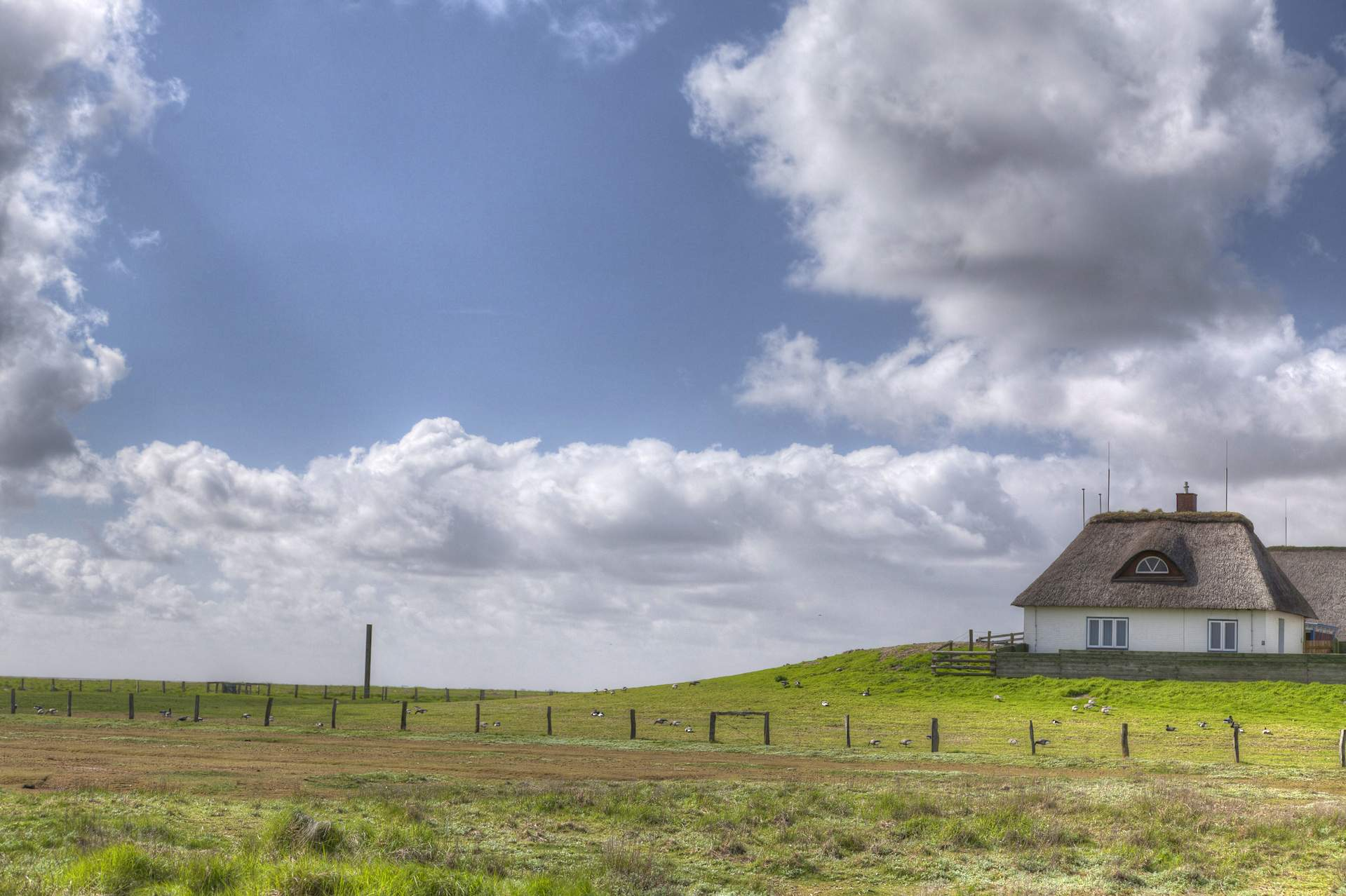 Windcloud Panorama
