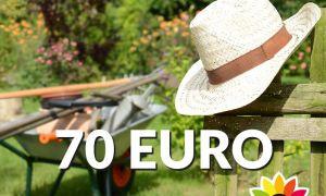 36 Genial Gutschein Garten Reizend
