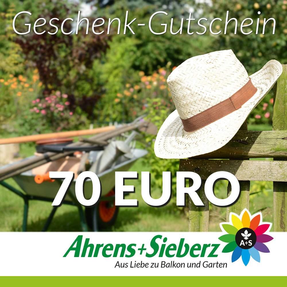 Gutschein Garten Luxus Geschenk Gutschein Wert 70 Euro Hut