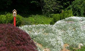 35 Inspirierend Hamburg Botanischer Garten Inspirierend
