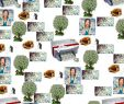 Haus & Garten Shop Inspirierend Создай свой сайт по шабРону за 1 час