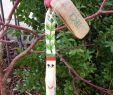 Haus Garten Luxus Kräuterstecker Dill