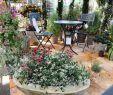 Herbstbepflanzung Für Kübel Und Balkon Garten Reizend Herbstbepflanzung Für Kübel Und Balkon Garten