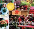 Herbstblumen Garten Winterhart Reizend Calaméo Mein Para S 5 2018 Risse