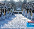 Herrenhäuser Gärten Eintritt Reizend Heirat In Herrenhausen Vermietungen