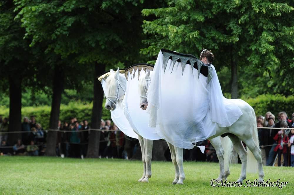 feuerwerk der pferde herrenhauser garten in hannover 2012