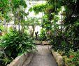 Herrenhäuser Gärten Veranstaltungen Elegant Tropenschauhaus Schauhäuser Berggarten