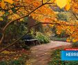 Herrenhäuser Gärten Veranstaltungen Inspirierend Veranstaltungen Herrenhausen Hannover