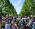 Herrenhäuser Gärten Veranstaltungen Schön 2015 Kleines Fest Herrenhausen Picknick Vorab