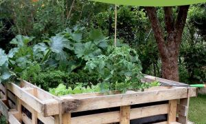 33 Schön Hochbeet Garten Neu