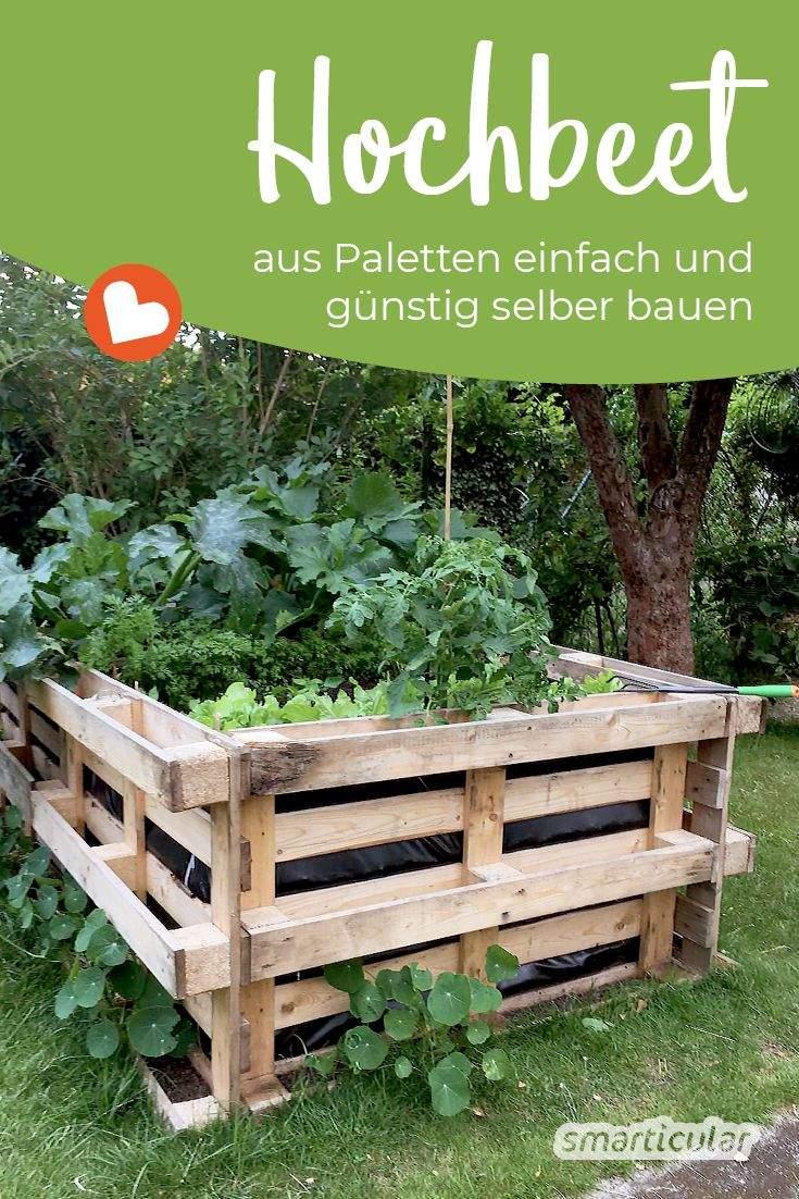 Hochbeet Garten Genial Hochbeet Selber Bauen Einfach Und Preiswert Aus Paletten