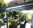 Hochbeet Im Garten Neu 12 Einzigartig Bild Von Paletten Garten Sichtschutz