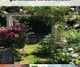Hochbeet Im Garten Reizend Kleiner Garten 60 Modelle Und Inspirierende Designideen