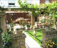 Hof Und Garten Elegant Feuerstellen Im Garten — Temobardz Home Blog