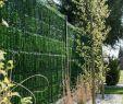 """Holz Sichtschutz Garten Elegant Zaunblende """"greenfences"""" Sichtschutz Für Zaun Garten Und"""