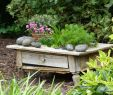 Holzpaneele Garten Neu Hillside Giardino Escursione A Renana Nel Giardino Di