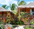 Hotel Garten Bonn Inspirierend Bg Kiteschool Brasilien Barra Grande Barra Grande
