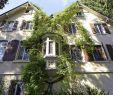 """Hotel Kaisers Garten Schön Und Ob Man Es Nicht Doch Hätte Retten Können """" Kultur"""