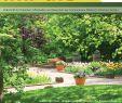 Hundeurin Neutralisieren Garten Inspirierend 21 Impuls2009