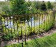 Hundezaun Garten Inspirierend Tür Für Steckzaun Vienna