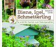 Igel Im Garten Reizend Biene Igel Schmetterling so Wird Ihr Garten Zum Naturpara S