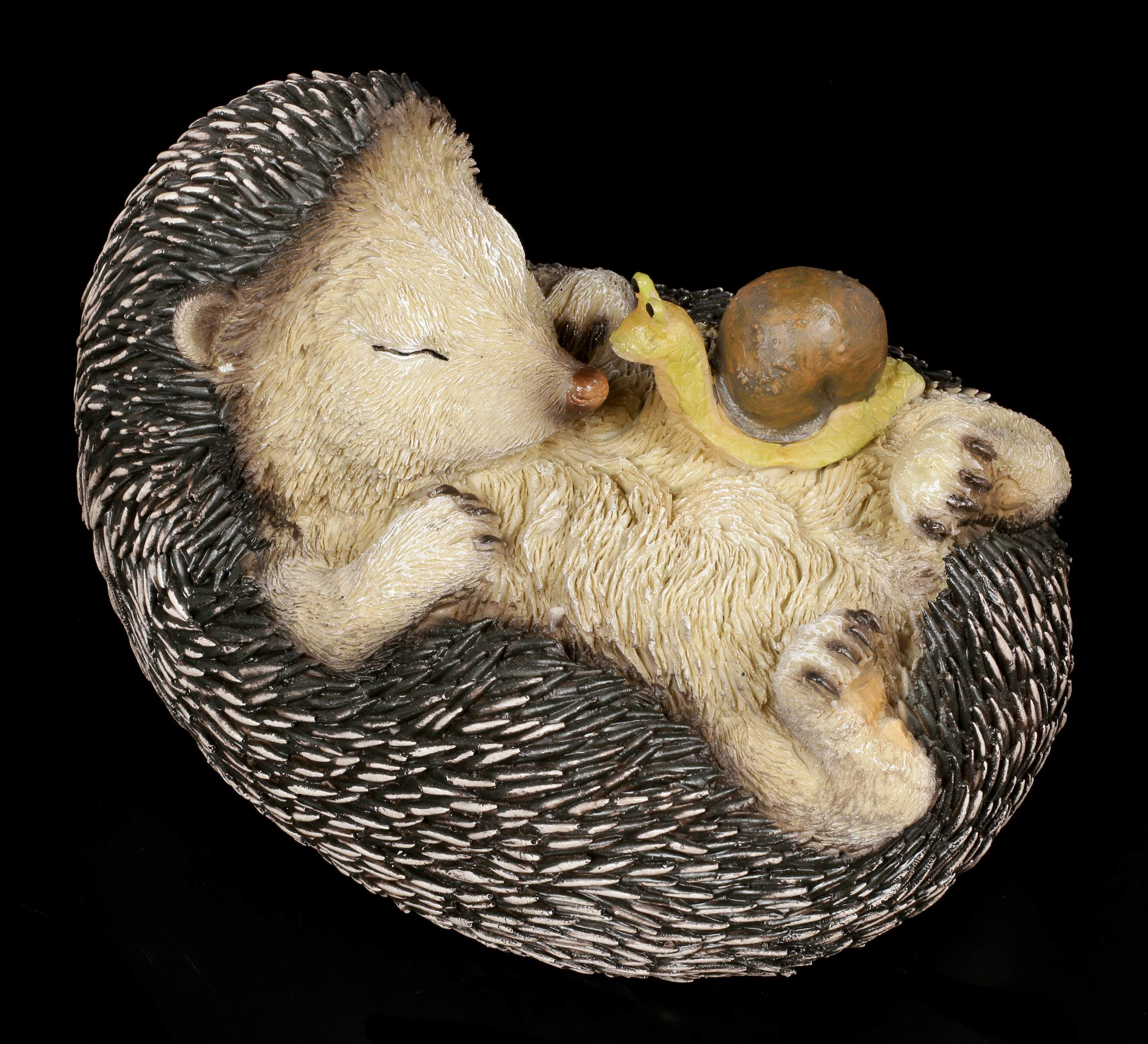 Gartenfigur Schlafender Igel Mit Schnecke 4