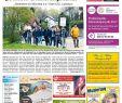 Interkultureller Garten Schön Kw 18 2017 by Wochenanzeiger Me N Gmbh issuu