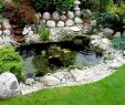Japanische Gärten Gestalten Inspirierende Fotos Und Gartenpläne Das Beste Von Gartenteich
