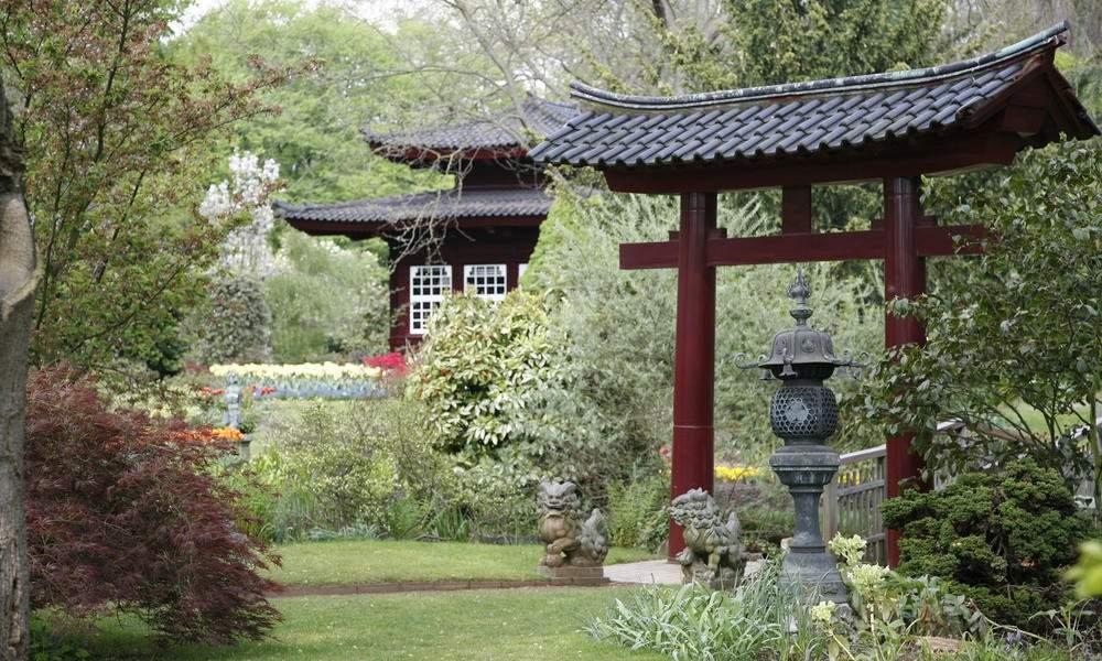 japanischer garten tipps zum gestalten und anlegen