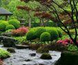 Japanische Gärten Gestalten Inspirierende Fotos Und Gartenpläne Neu Japanische Gärten Erstaunliche Fotos
