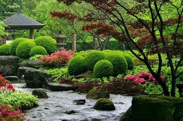 japanische garten erstaunliche fotos