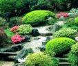 Japanische Gärten Gestalten Inspirierende Fotos Und Gartenpläne Schön Japanischer Garten Selbst Anlegen Selber Machen Westpark