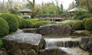33 Luxus Japanischer Garten Augsburg Genial