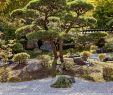 Japanischer Garten Bad Langensalza Genial Deutsch Japanisch Stockfotos & Deutsch Japanisch Bilder Alamy