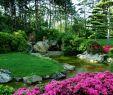 Japanischer Garten Berlin Das Beste Von Die 53 Besten Bilder Von Japanisches Love